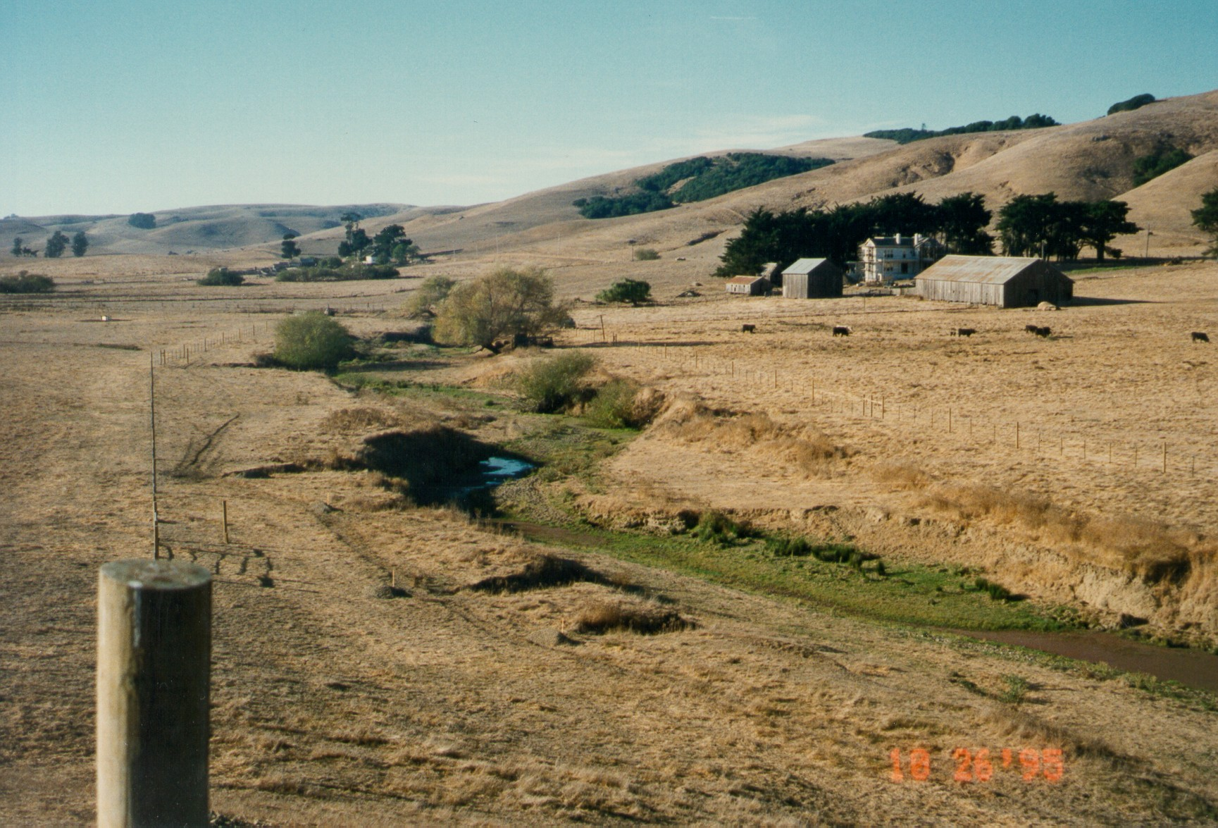 restored gully_before_Gale