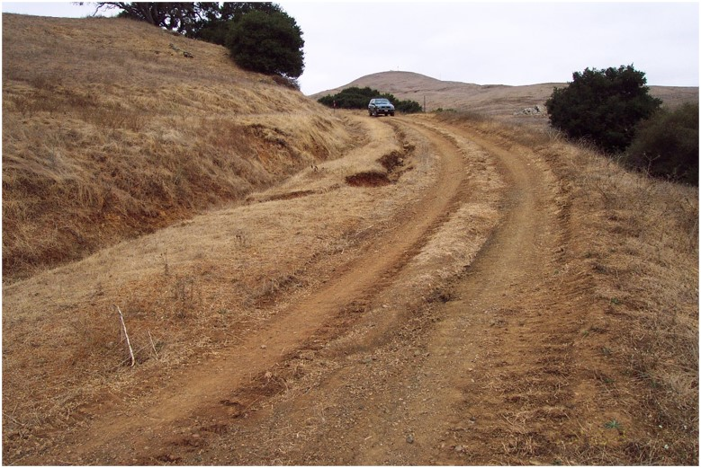 A dirt road in a brown grassy area is ditched, gullied, deeply rutted, and bermed