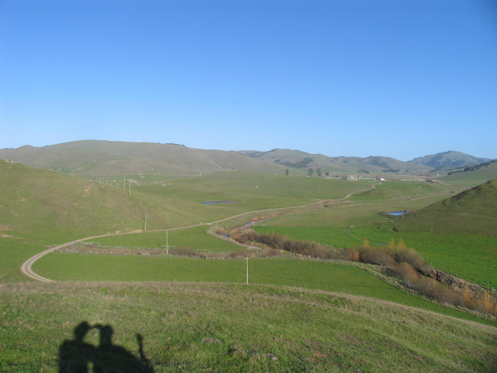A bright blue-sky day in the Marin hills is shown, from the same location as the previous image. All the fields and hills are green, vibrant with growing grass, and some patches of trees and shrubs remain. Noticeably different is how the creek area in the foreground has been planted, with fences around new trees.