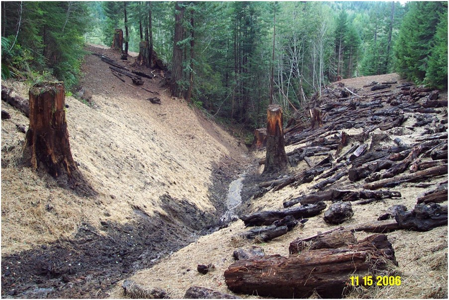 The steep banks next to the road are covered with straw and dead logs.