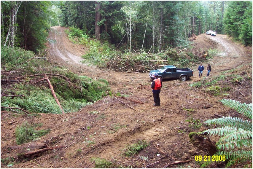 In a forest, a team stands on the curve of a dirt road that looks degraded, with piles of cut-down vegetation (branches, logs, etc.).