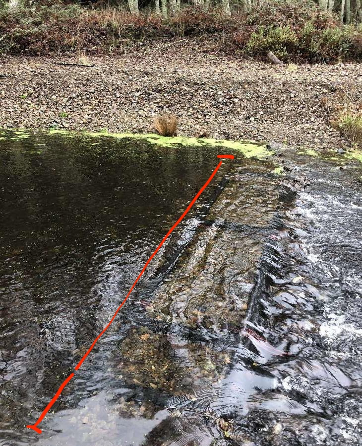 The photo shows a running stream with clear enough water that rocks and the PIT array are visible on the bottom. The image is overlaid with a red line that shows the location of the PIT array, which spans the width of the stream. It looks like a series of black rectangles lying on the bed of the stream.