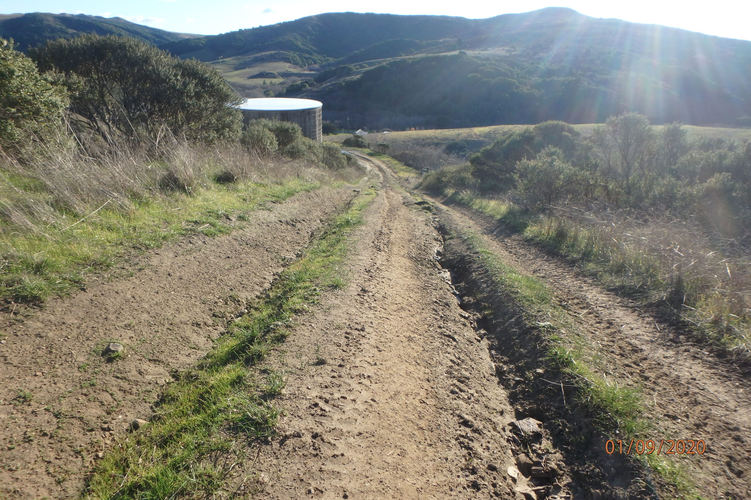 A dirt road down a hill has a deep rut, and an entirely uneven surface.