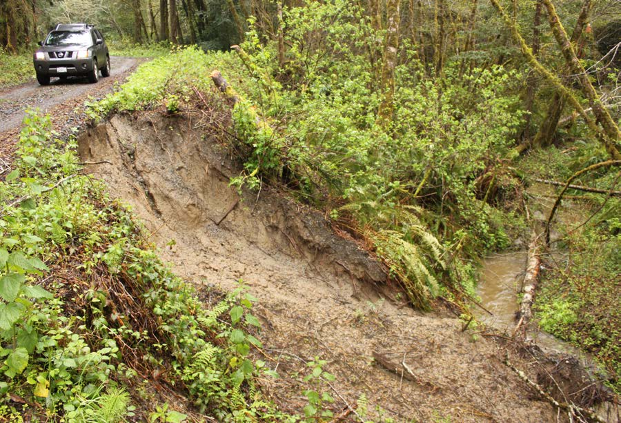 On another forest road, an entire section of the fill slope has eroded into the stream.