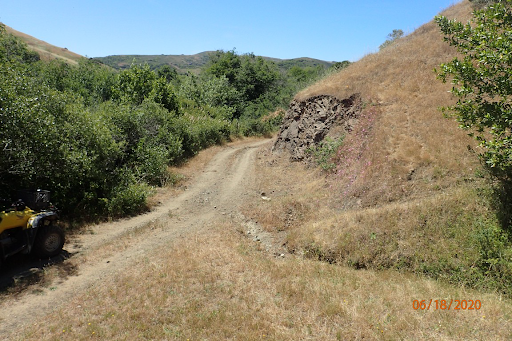 A two-track dirt road crosses the image. To one side is a steep hill that shows signs of erosion, and a small gully runs down into the road. On the other side of the road, trees line the riparian zone of Walker Creek.